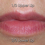 Lips with the right proportion